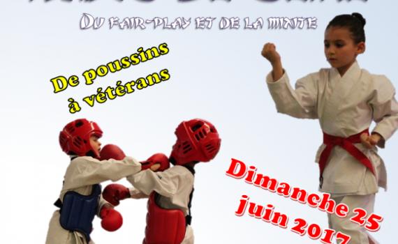 20170625_Challenge_Hauts_De_Seine_Affiche_V1.1-709x1024